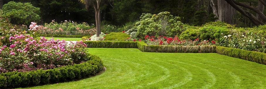 attractive-garden