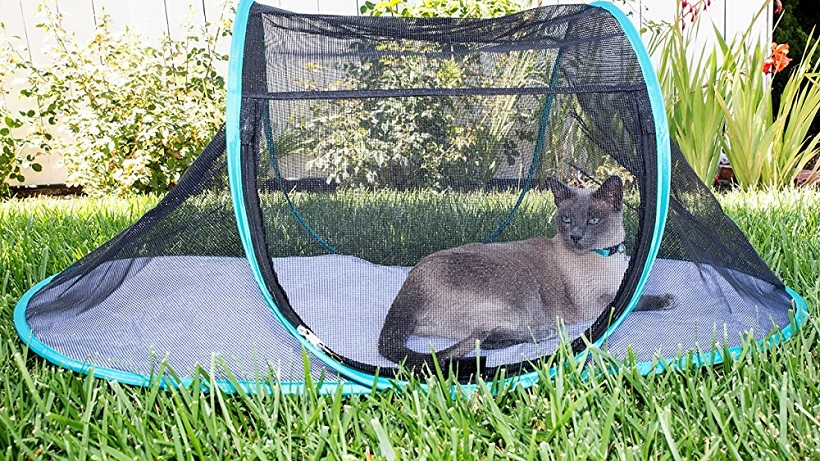 portable cat enclosures
