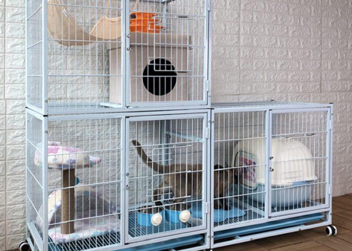 portable cat enclosures