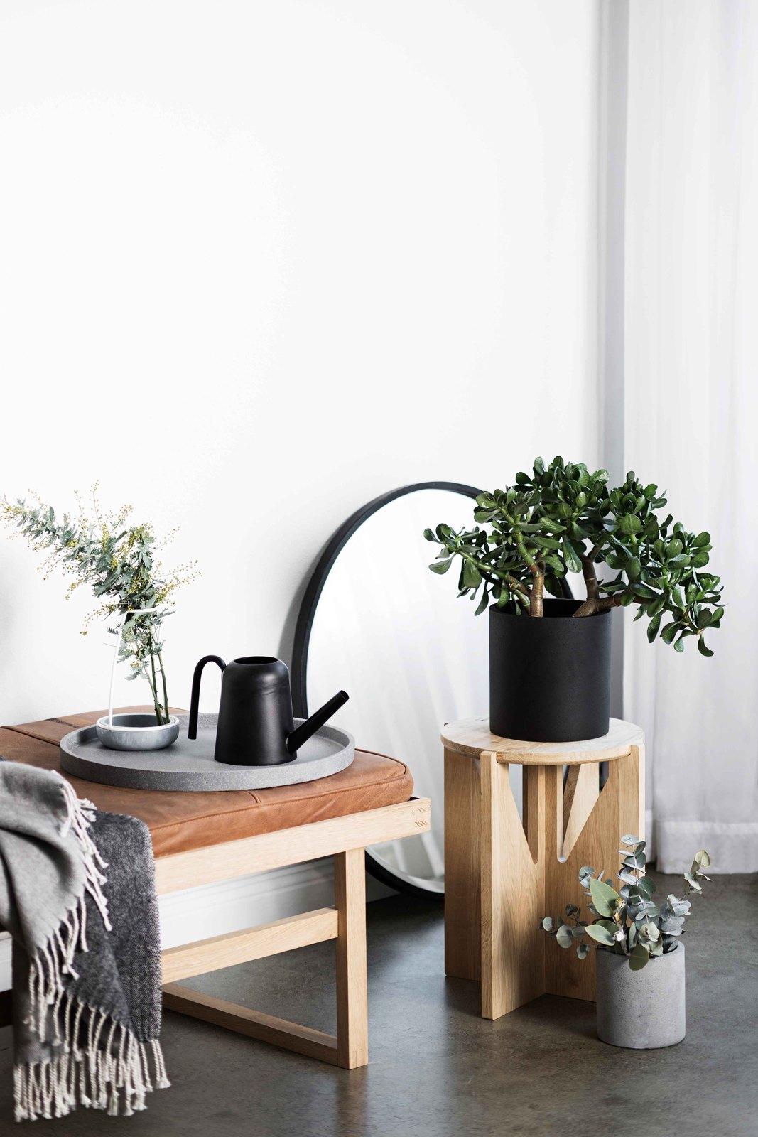 concrete pots living room