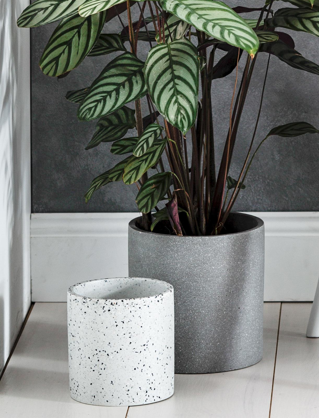 concrete pots cream white