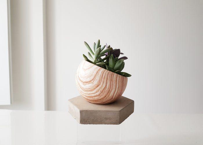 Concret Pots Featured