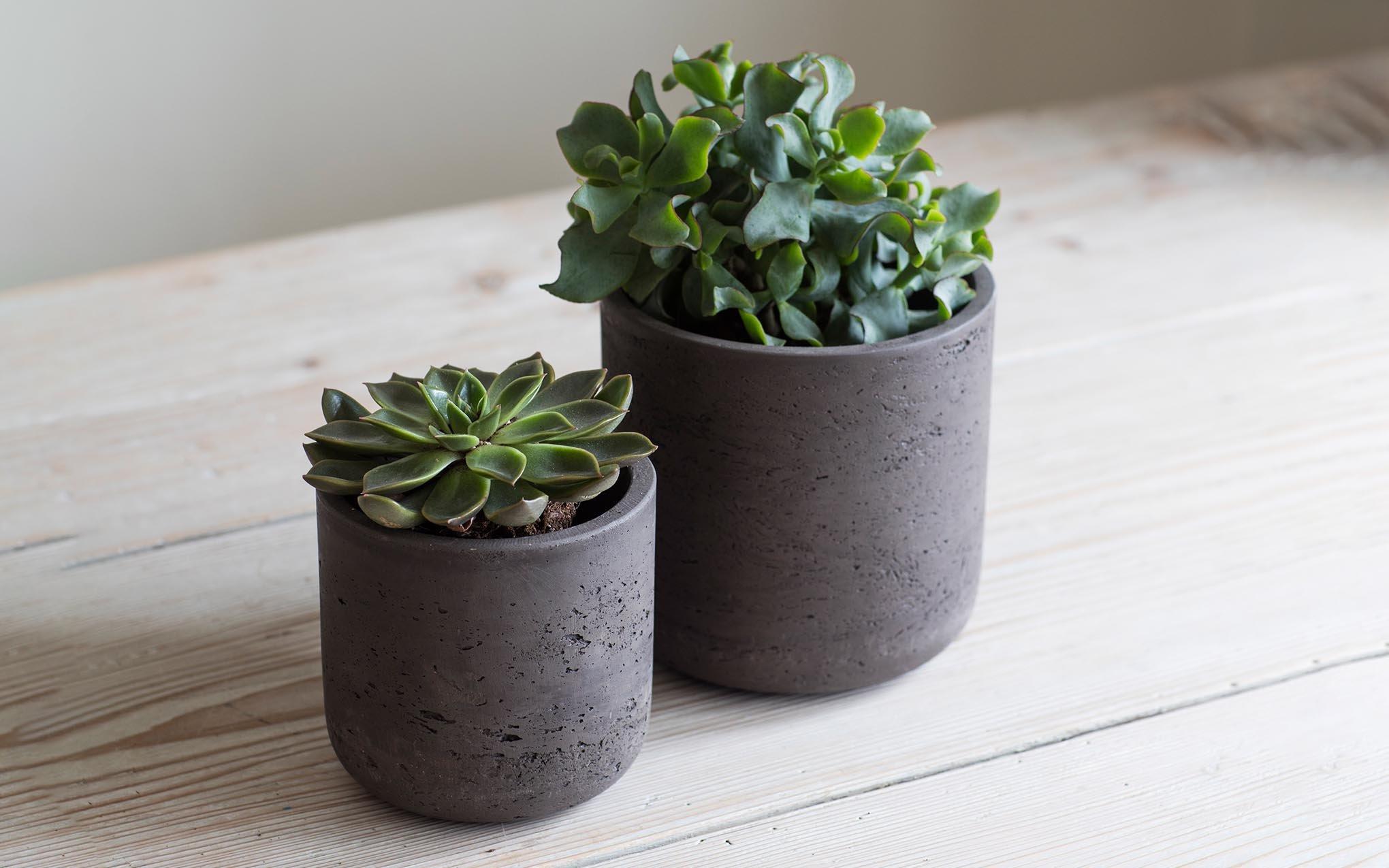 Concret Pots ceramic
